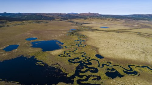 Alaska Beaver complex- permafrost & tundra- Andrea Sparrow